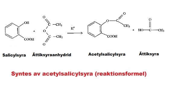 Syntes av acetylsalicylsyra